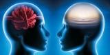 Denkblockaden überwinden: Klarheit statt Knoten im Kopf