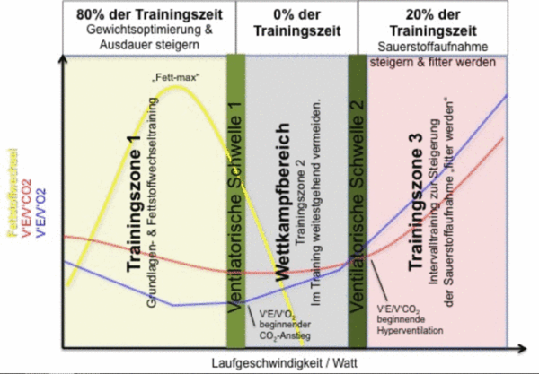 Kritik am fünfzonigen Trainingsmodel